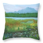 Mt Ampersand From Oseetah Lake Throw Pillow