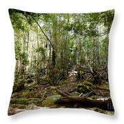 Mt Field Forest Throw Pillow