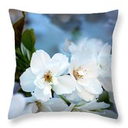 Mt. Fuji Cherry Blossoms Throw Pillow