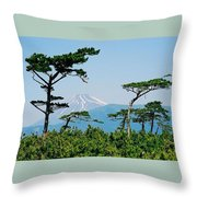 Mt. Fuji ... Throw Pillow