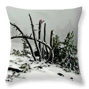 Mt Hood Snow Throw Pillow