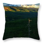 Mt Hood With Snag Throw Pillow