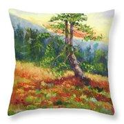 Mt. Jumbo Tree Ak Throw Pillow