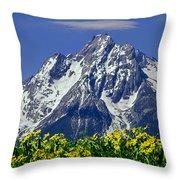 1m9224-mt. Moran  Throw Pillow