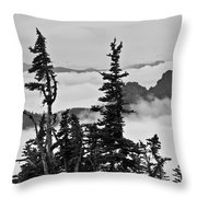 Mt Rainier National Park Throw Pillow