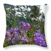 Mt. Rainier Wild Flowers Throw Pillow