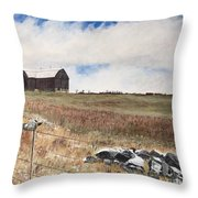 Mt Savior Barn Throw Pillow