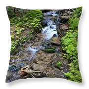 Mt. Spokane Creek 2 Throw Pillow