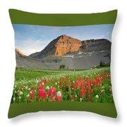 Mt Timpanogos Throw Pillow