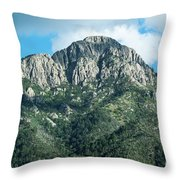 Mt. Wrightson Summit Throw Pillow