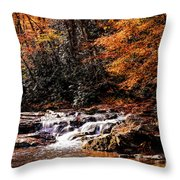 A Warm Fall Day Throw Pillow