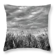 Muck City Landscape Throw Pillow