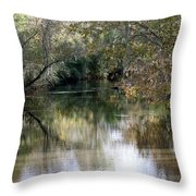 Muckalee Creek Throw Pillow