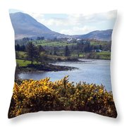 Muckish ,irish Landscape  Throw Pillow