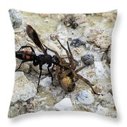Mud Dauber Wasp And Prey Throw Pillow