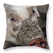Mud Face Throw Pillow