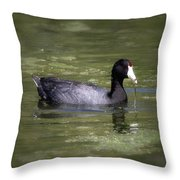 Mud Hen Throw Pillow