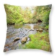 Mud Run, Pennsylvania, Pocono Mountain Stream Throw Pillow