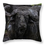 Mud Sculpture-signed Throw Pillow