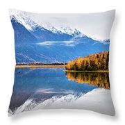 Mudd Lake Reflections Throw Pillow