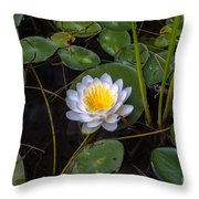 Mudd Pond Water Lily Throw Pillow
