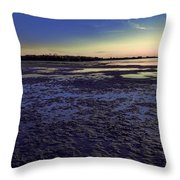 Muddy Beach Throw Pillow