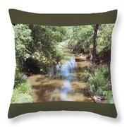 Muddy Hickory Creek  Throw Pillow