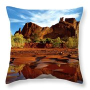 Muddy Reflection Throw Pillow