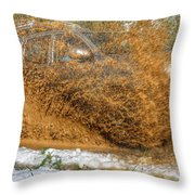 Mudslide Throw Pillow
