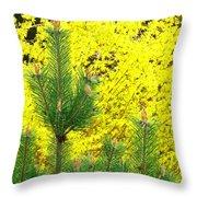 Mugo Pine And Forsythia Throw Pillow