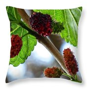 Mulberry Season Throw Pillow