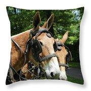 Mule 5 Throw Pillow