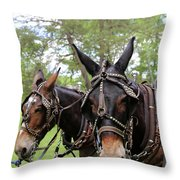 Mule Days 2 Throw Pillow