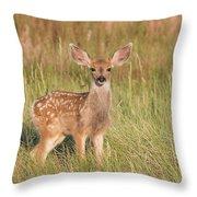 Mule Deer Fawn Is All Ears Throw Pillow