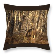Mule Deer In Aspen Thicket Throw Pillow