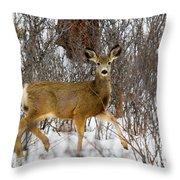 Mule Deer Portrait In Heavy Snow Throw Pillow