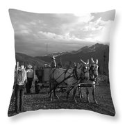 Mule Drawn Wagon Throw Pillow