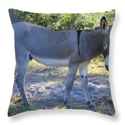 Mule In The Pasture Throw Pillow