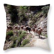 Mule Train Throw Pillow