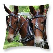 Mules 6 Throw Pillow