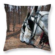 Mules At Sugar Camp Throw Pillow