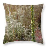 Mullin And Other Springtime Wildflowers Throw Pillow