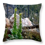 Mullin On The Mountain Throw Pillow