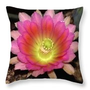 Multi Color Flower Throw Pillow