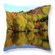 Multi-colored Coast Throw Pillow
