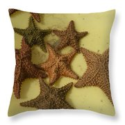 Multi-colored Star Fish On The Sand Throw Pillow