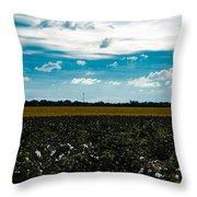 Multi-tasking Farm Throw Pillow