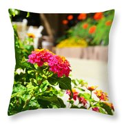 Multicolored Flowers Throw Pillow