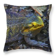 Multicolored Lizard Throw Pillow