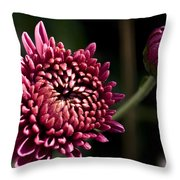 Mums Throw Pillow